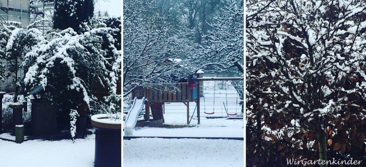 Gartenmonat Januar – nur zum Träumen und Planen?
