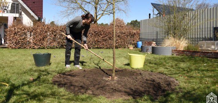Letzter Schliff nach dem Bäume pflanzen